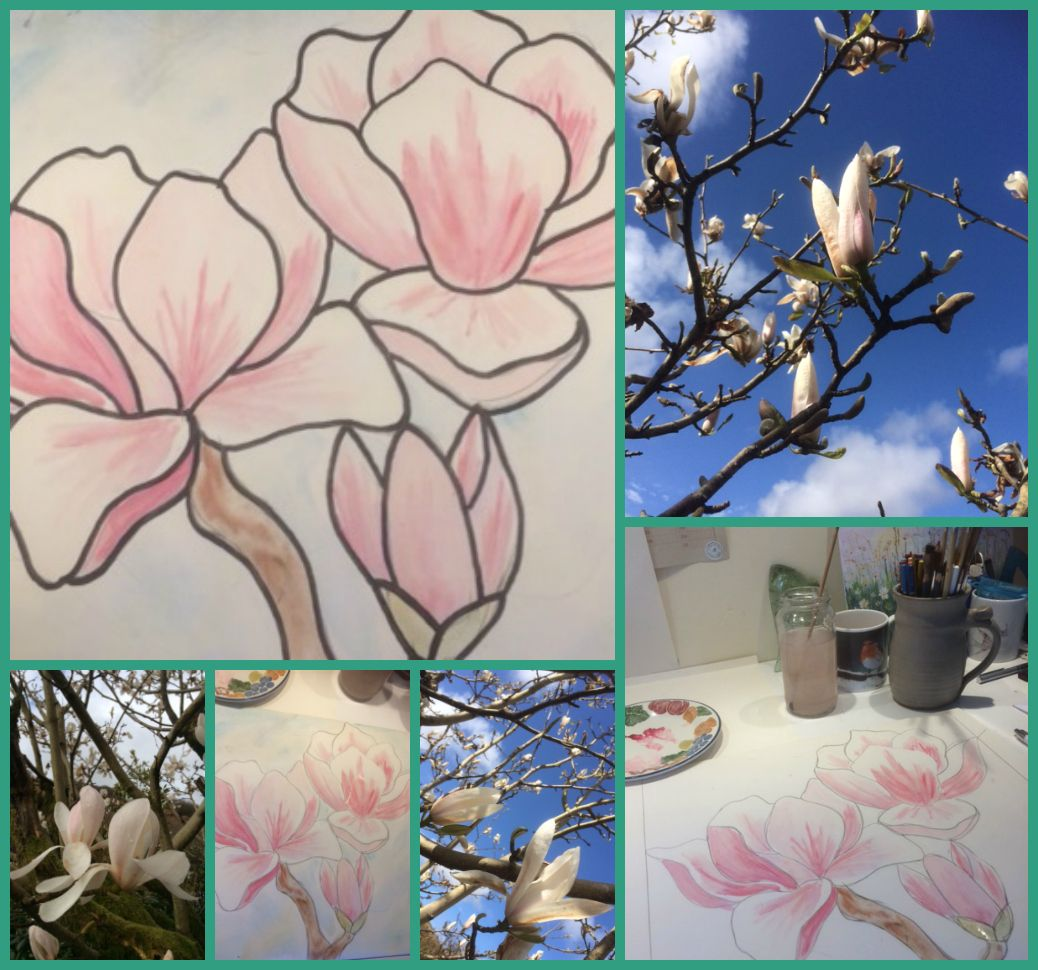 Magnolia, Stained Glass, Argyll, The Little Things